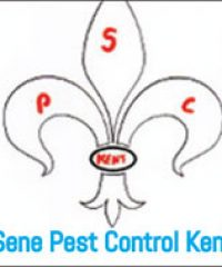 Sene Pest Control – Kent