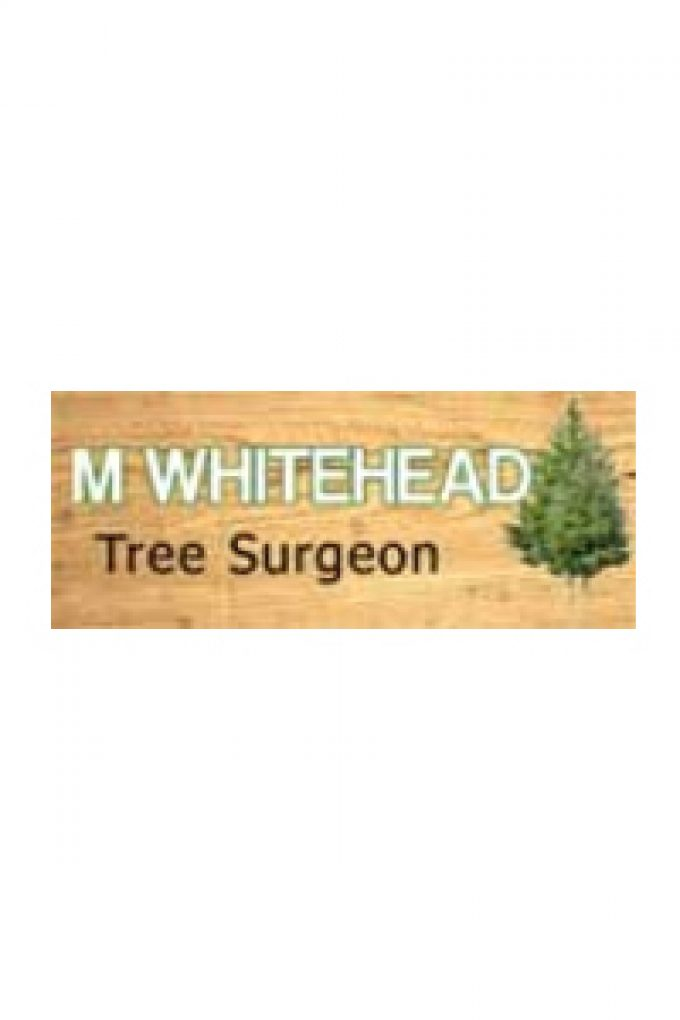 M Whitehead Tree Surgeon