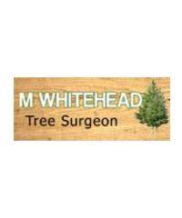 M Whitehead Tree Surgeon