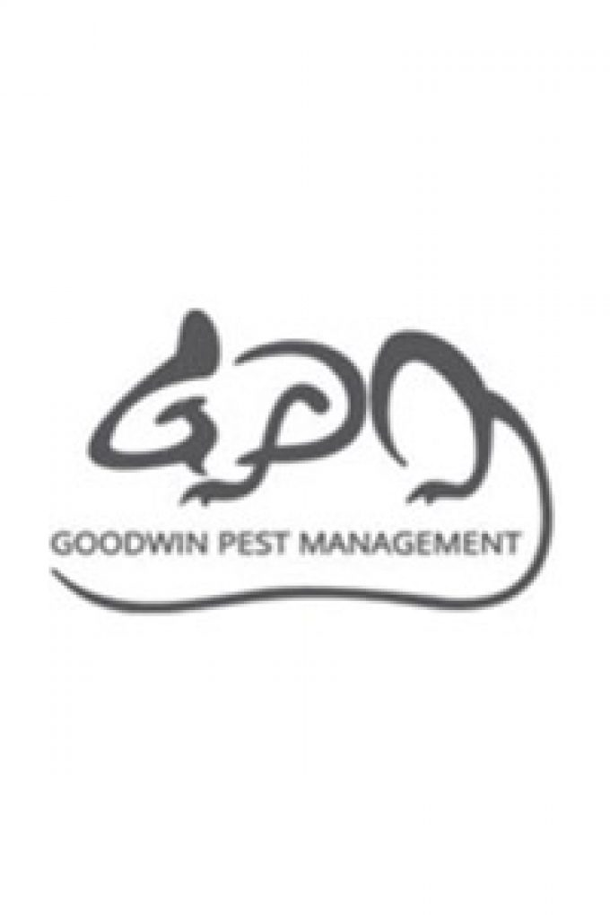 Goodwin Pest Management